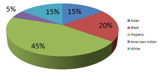 Diversity of Student Body Fall 2013
