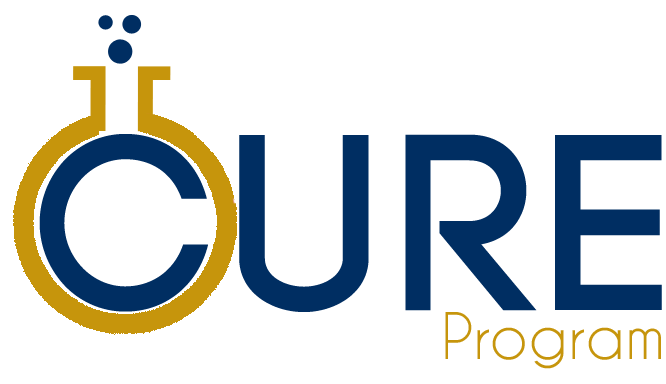 coulter undergraduate research excellence program cure