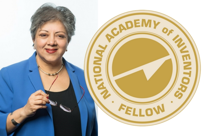 Dr. Ranu Jung Selected as NAI Fellow