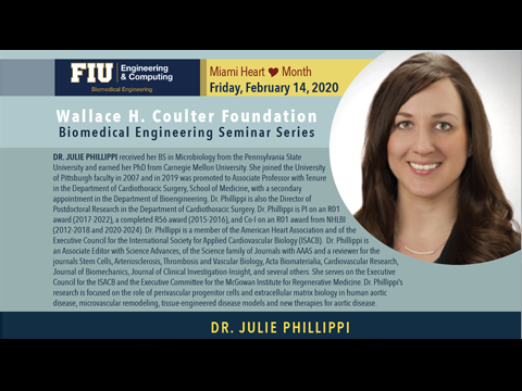 Dr. Julie Phillippi | Extracellular Matrix Hydrogels for Microvascular Regeneration