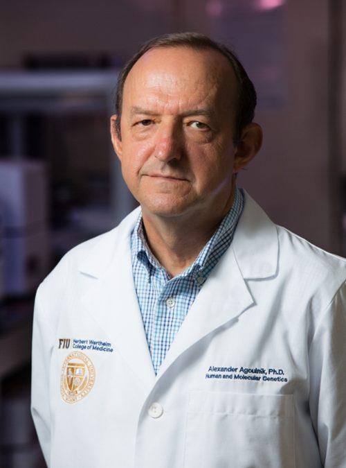 Alexander Agoulnik, Ph.D.